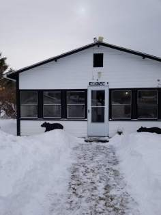 QT Cottage