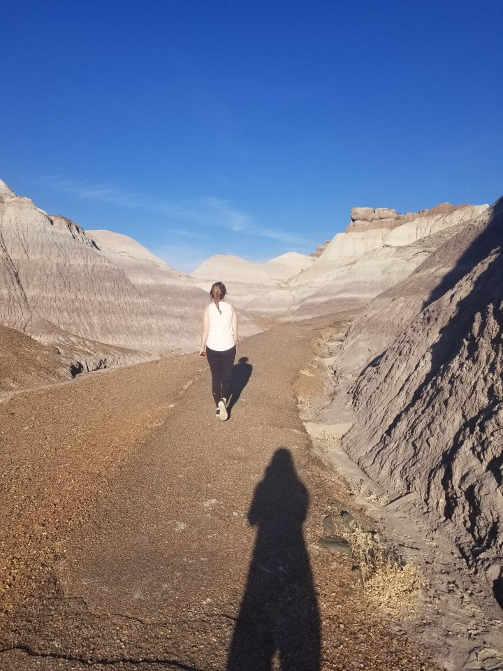 walking-blue-mesa-trail-petrified-forest-painted-desert