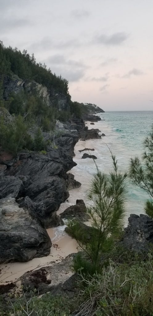 view-astwood-park-bermuda